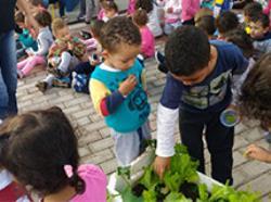 Horta Educativa no CEU CEI Alto Alegre